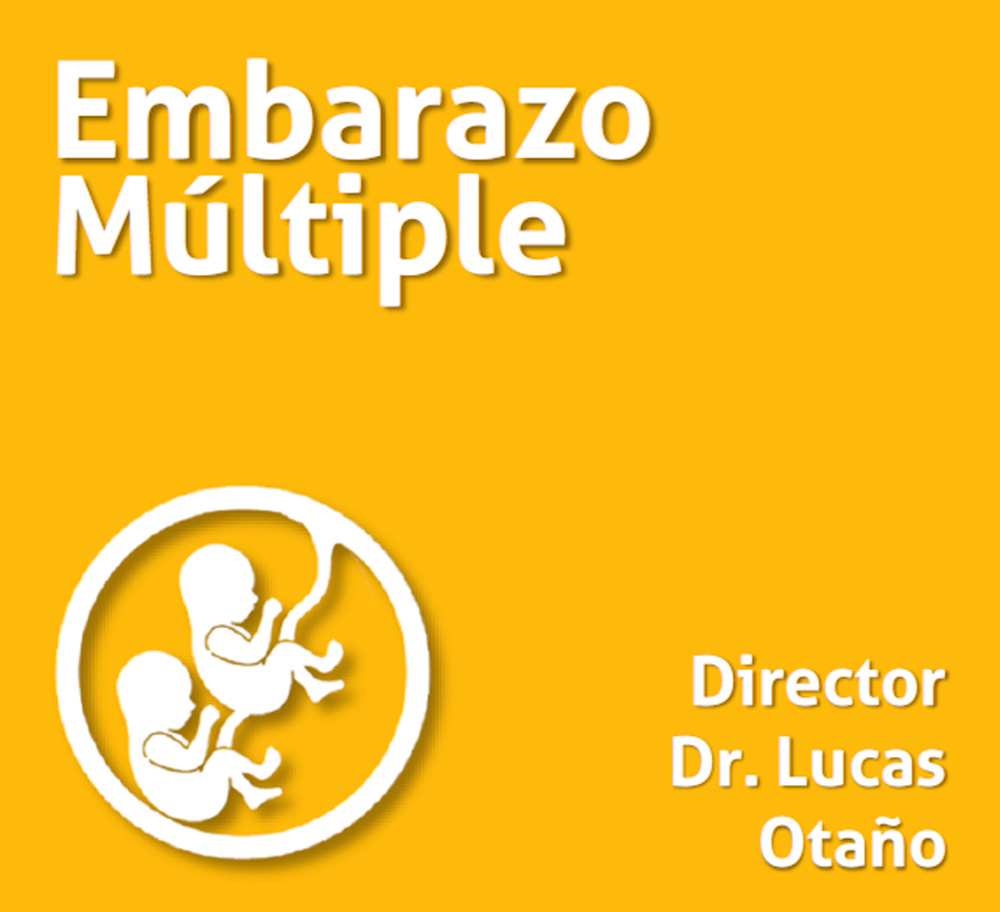 Curso Embarazo Multiple